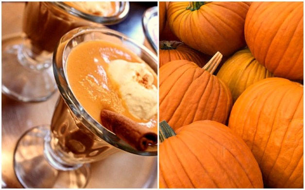 Pumpkin Pudding_Side by Side